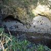 龍宮窟のハートビュースポットからのハート・・・に見えるはず
