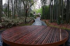 竹林の中心