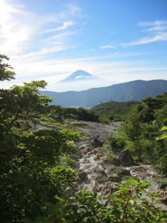 夏の大涌谷からの富士山