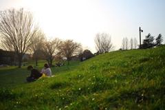 夕暮れ時の芝生