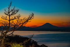 江の島シーキャンドル からの夜景Ⅲ