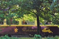 Watarase