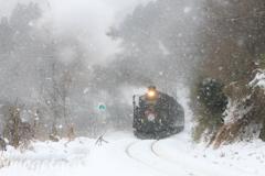 ホワイトクリスマス号