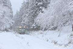 White Rail Way