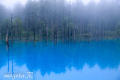 朝もやの青い池