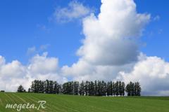 夏空のマイルドセブンの丘