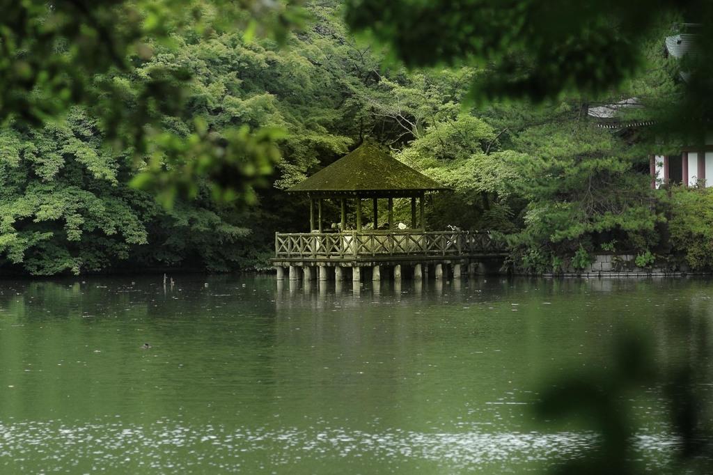 緑の浮身堂