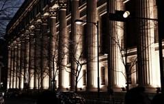 木枯らしの列柱