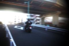 motorcycle daies