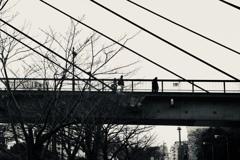 冬の架け橋