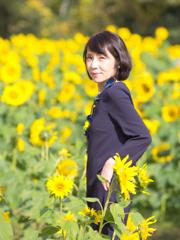 11月の向日葵