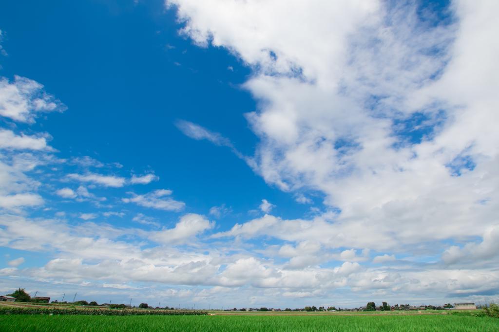 田園の上の空