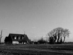 木と家のある風景
