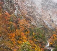 秋と冬の境界線