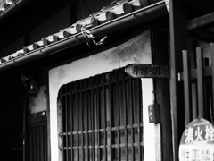 京都スナップ2