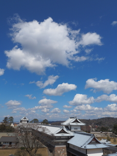 見渡す限り春の雲