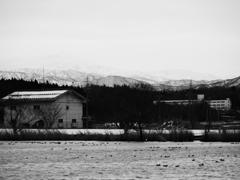 木場潟景 冬