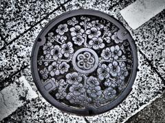 足元の梅鉢
