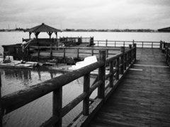 木場潟の出島