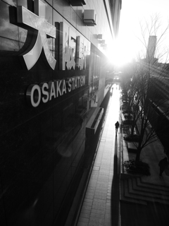 Blinded by the light ~Osaka Station~
