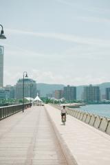 高松港の先端