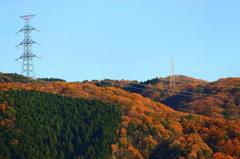鉄塔と秋と