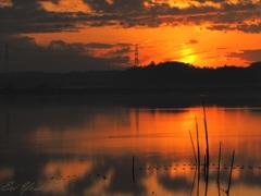 沼の夕暮れ