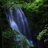 滝と青紅葉
