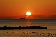 朝日を横断する船