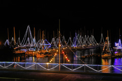 クリスマス間近のヨットハーバー