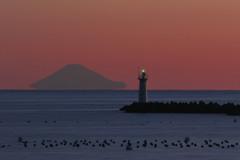 浮き富士を眺めて