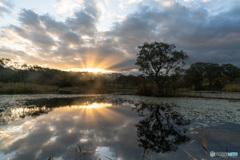 冬師湿原の朝