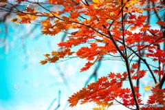 五色の沼に秋を添え