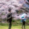 春色の想い出