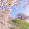 春は駆け足で・・・