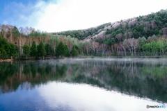新緑と霧氷の木戸池