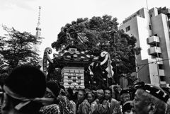 三社祭 002