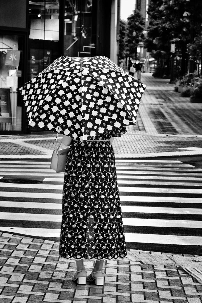 Monochrome-tokyo
