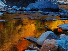 彩る川面 2