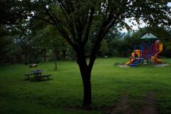 月曜日の公園
