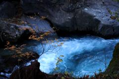 渓流にささやかな彩  ②