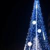 Waiting for Christmas4 ~月を飾る~