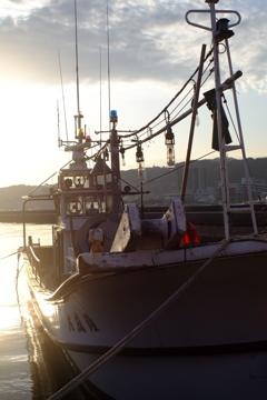 FRP船。