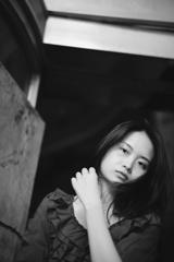 上海逍遥(参)