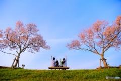 春、みぃ〜つけた!