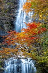 滝が映える季節に