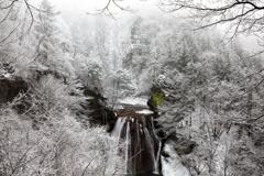 冬渓谷の美
