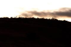 稜線のカメラマン