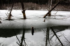 冬 湖の情景