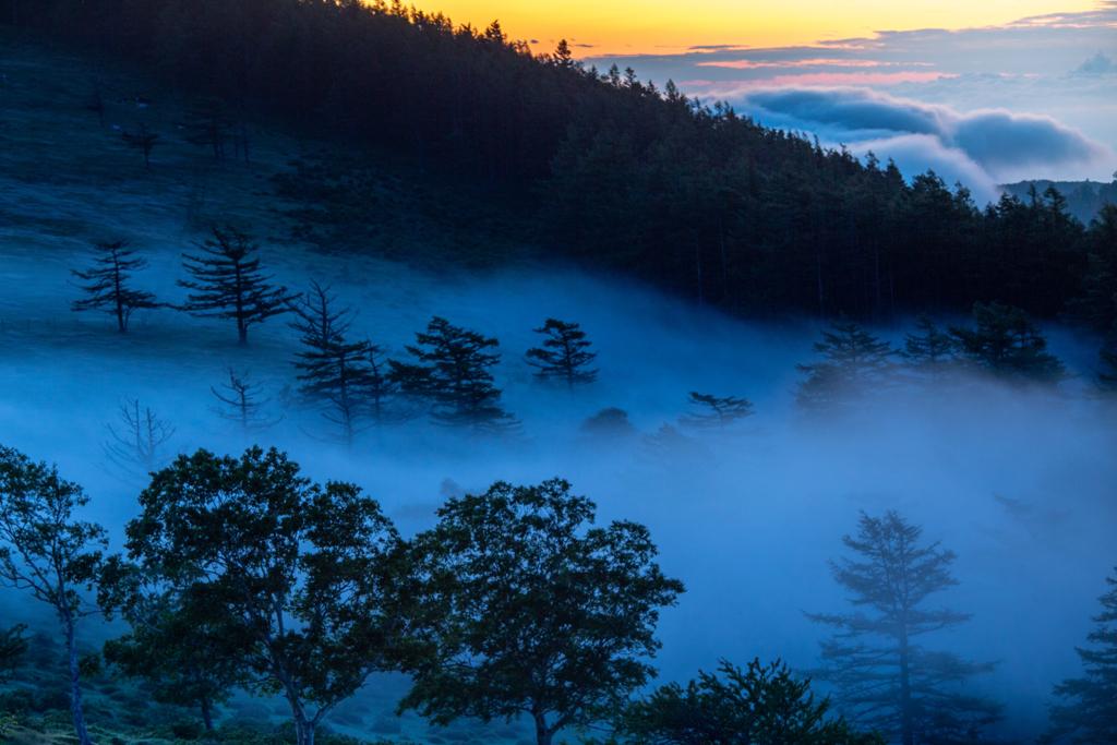朝霧流れる高原②